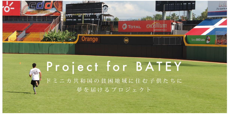 バテイに関するプロジェクト (Project for BATEY)